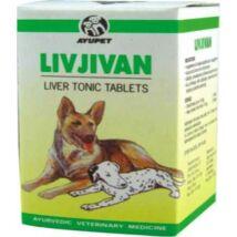 Livjivan májvédő cseppek Kutyáknak a jó emésztésért, vitalitásért és immunitásért 30ml
